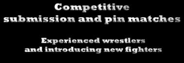 Experienced wrestlers 